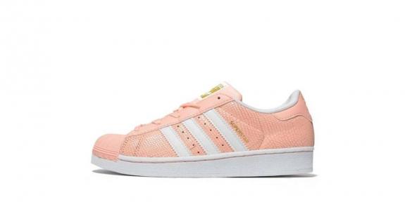 c21f817eea117 Toutes les chaussures sont 100% originales et de qualité supérieure